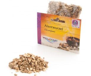 Alantwurzel (Inula helenium)
