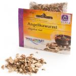 Angelikawurzel (Angelica archangelica)