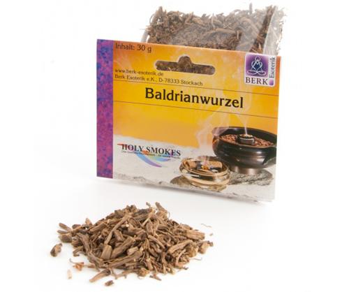 Baldrianwurzel (Valeriana officinalis)